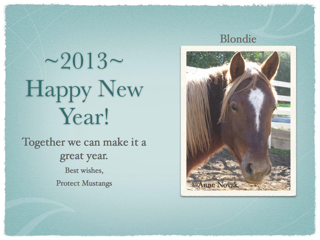 Happy new year from us protect mustangs happy new year from us spiritdancerdesigns Choice Image