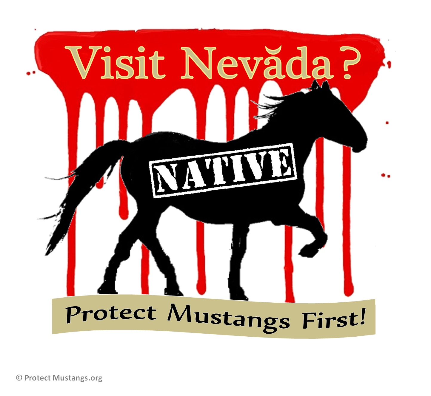 Protect native wild horses!  Protect Mustangs.org